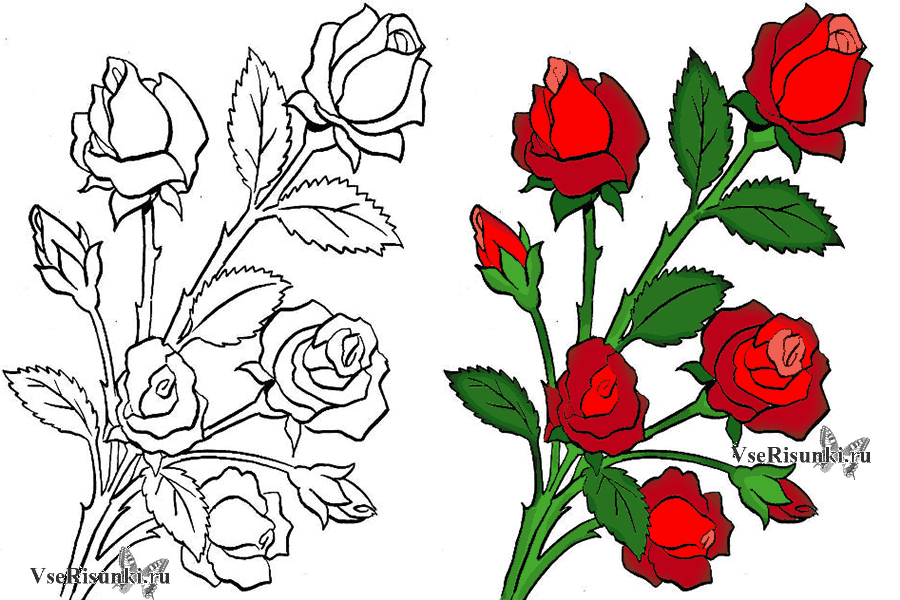 приемов букет цветов картинки как нарисовать свободной, яркой, окрыленной