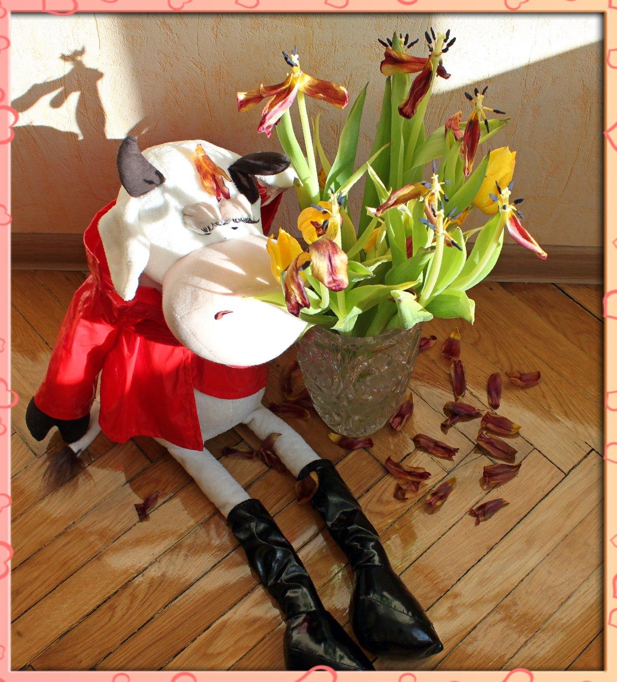 смешные букеты цветов фото нашей статье
