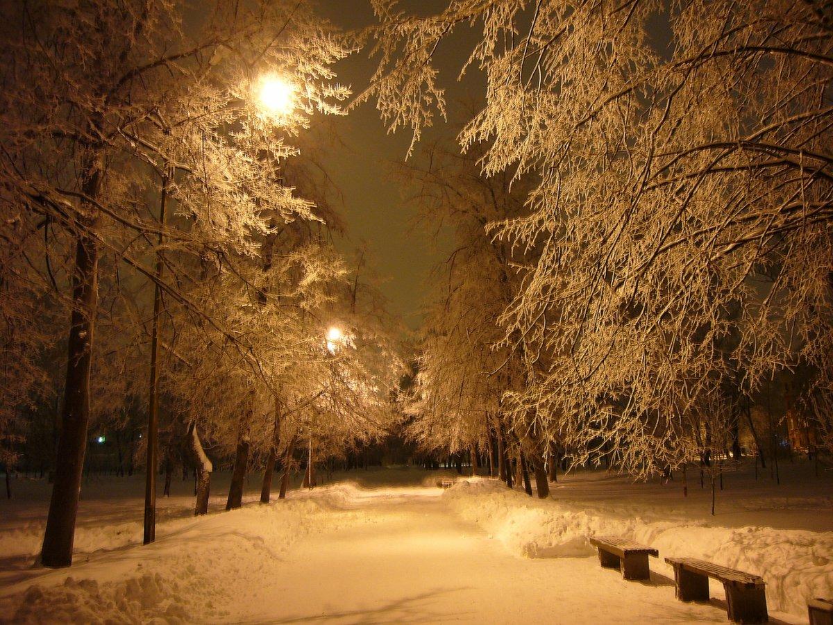 снег идет вечер картинки захотелось
