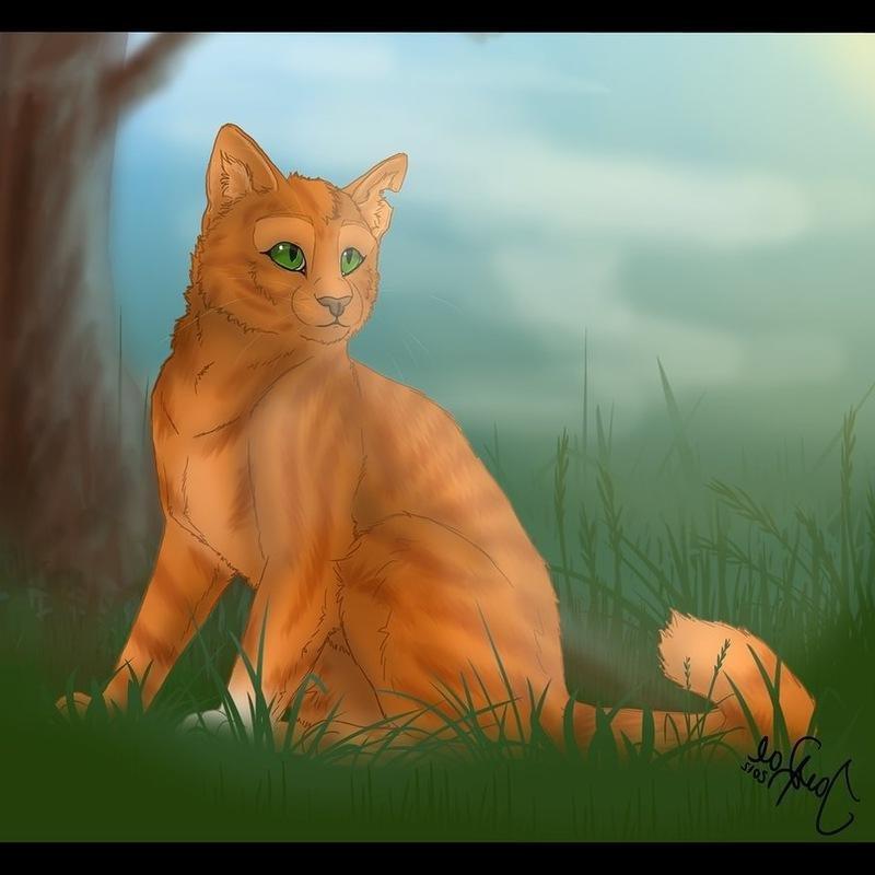 Картинки грозовых котов