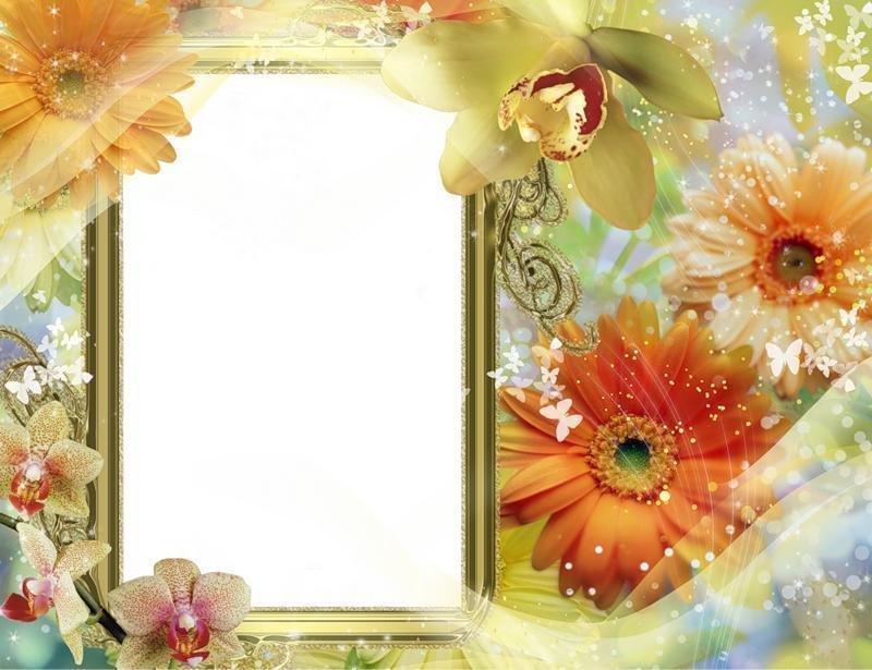 Открытки с цветами вставить, статусы картинки надписью