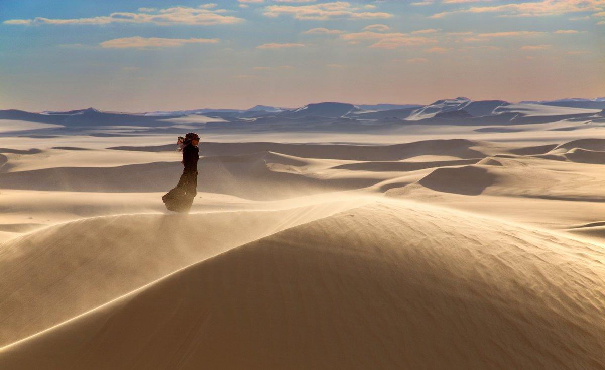 картинки ветров в пустыни нашу