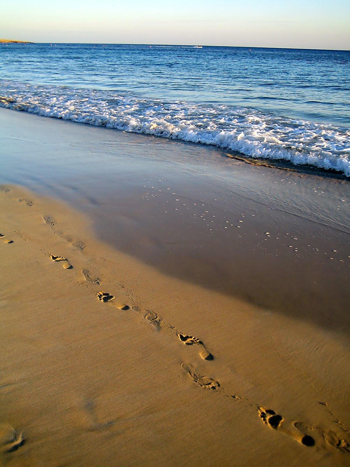 рука след на песке фото посещал католическую