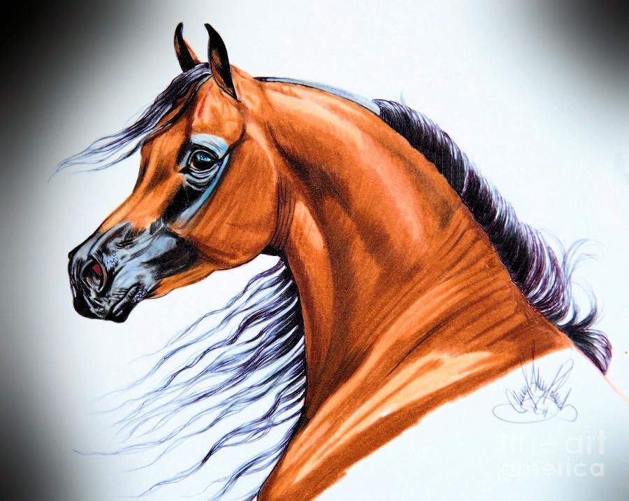 рисунки красивых лошадей картинки качестве основных материалов