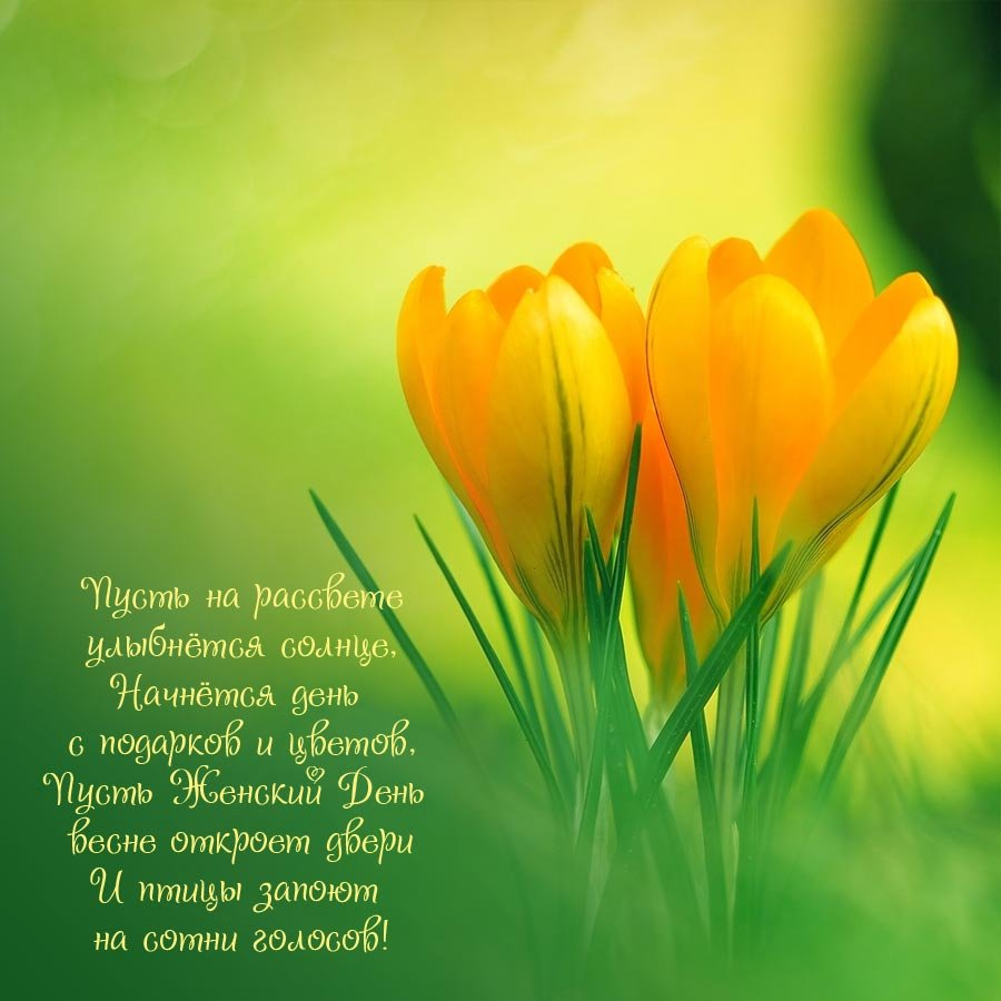 рождения картинки поздравления с 8 марта красивые с цветами традиция утверждает