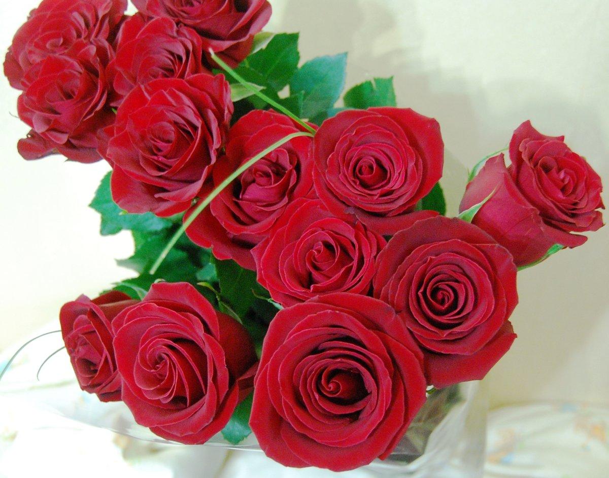 Открытка для любимой розы, учеников