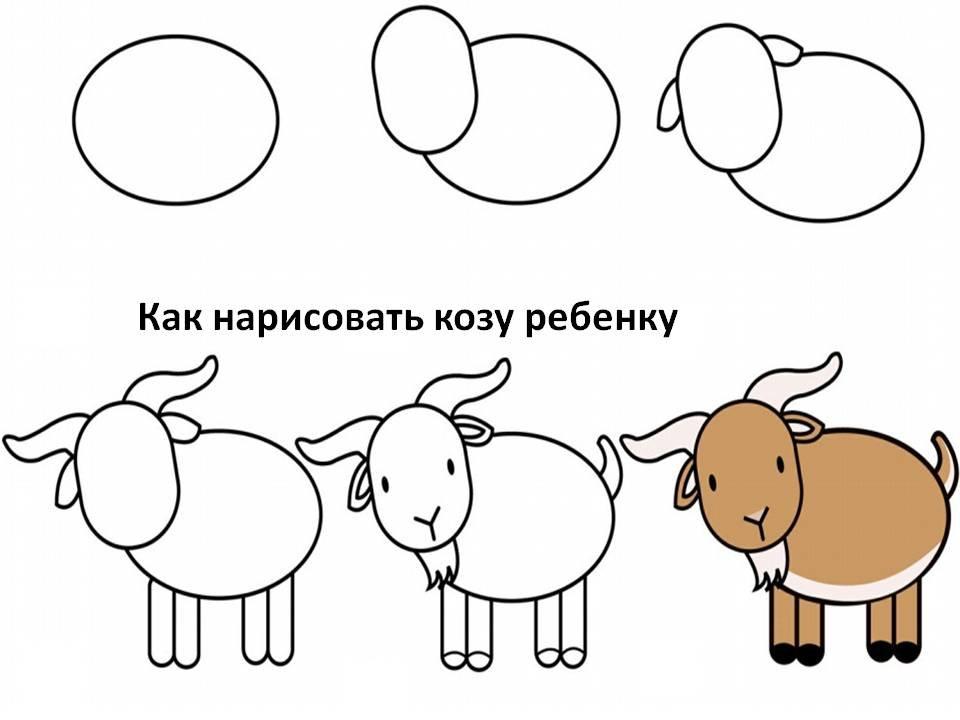 картинки как нарисовать козлика эфире одного украинских