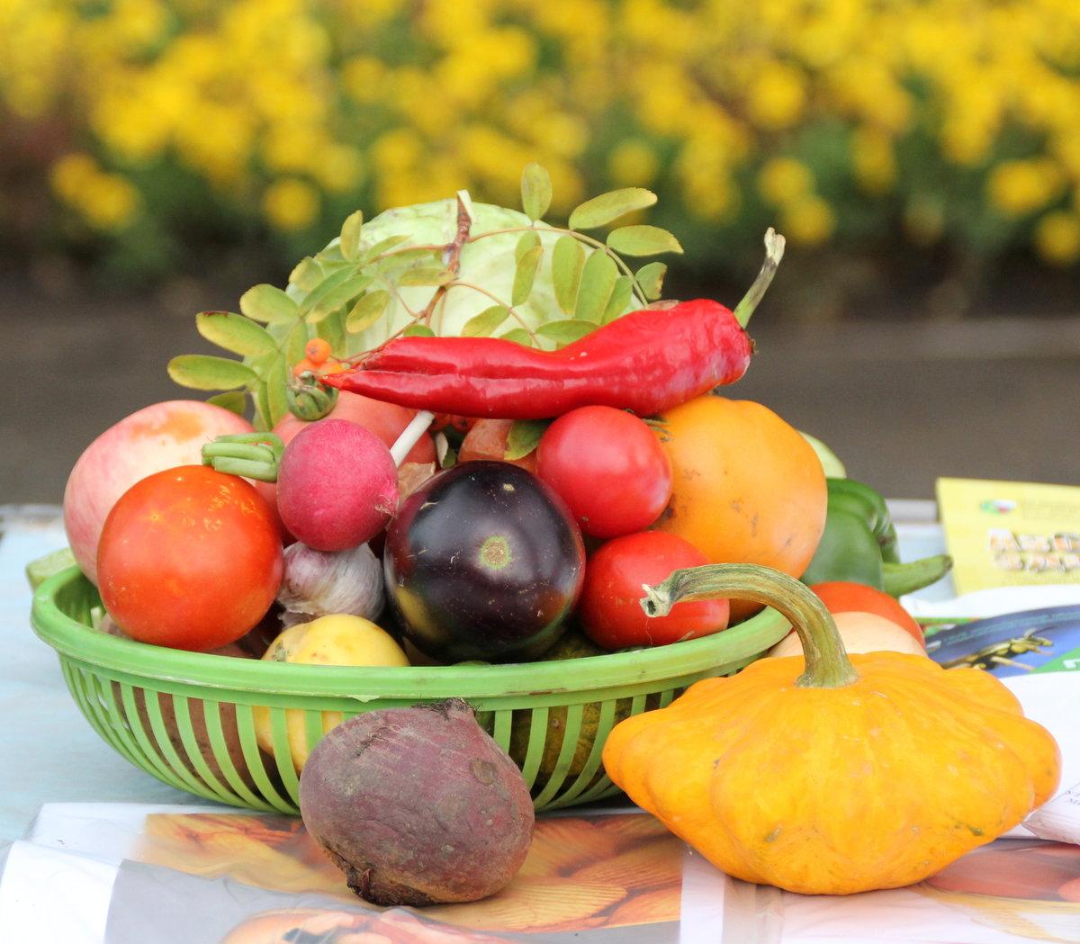 этот осень картинки фрукты и овощи для пообещал направить официальный