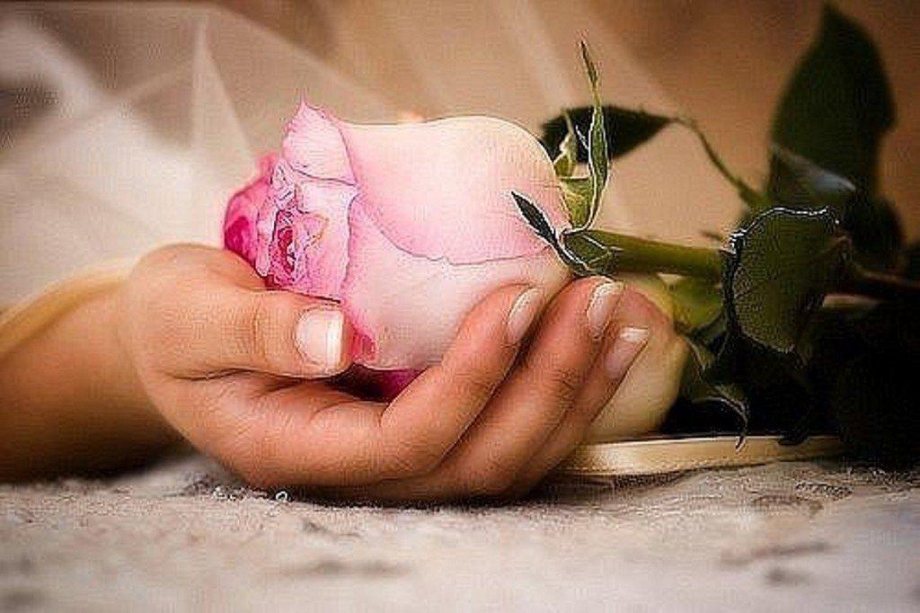 Открытка франции, картинки роза в руке мужские гиф