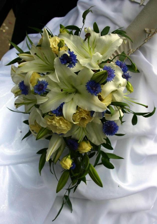 также букет из синих лилий фото выбрать тайскую
