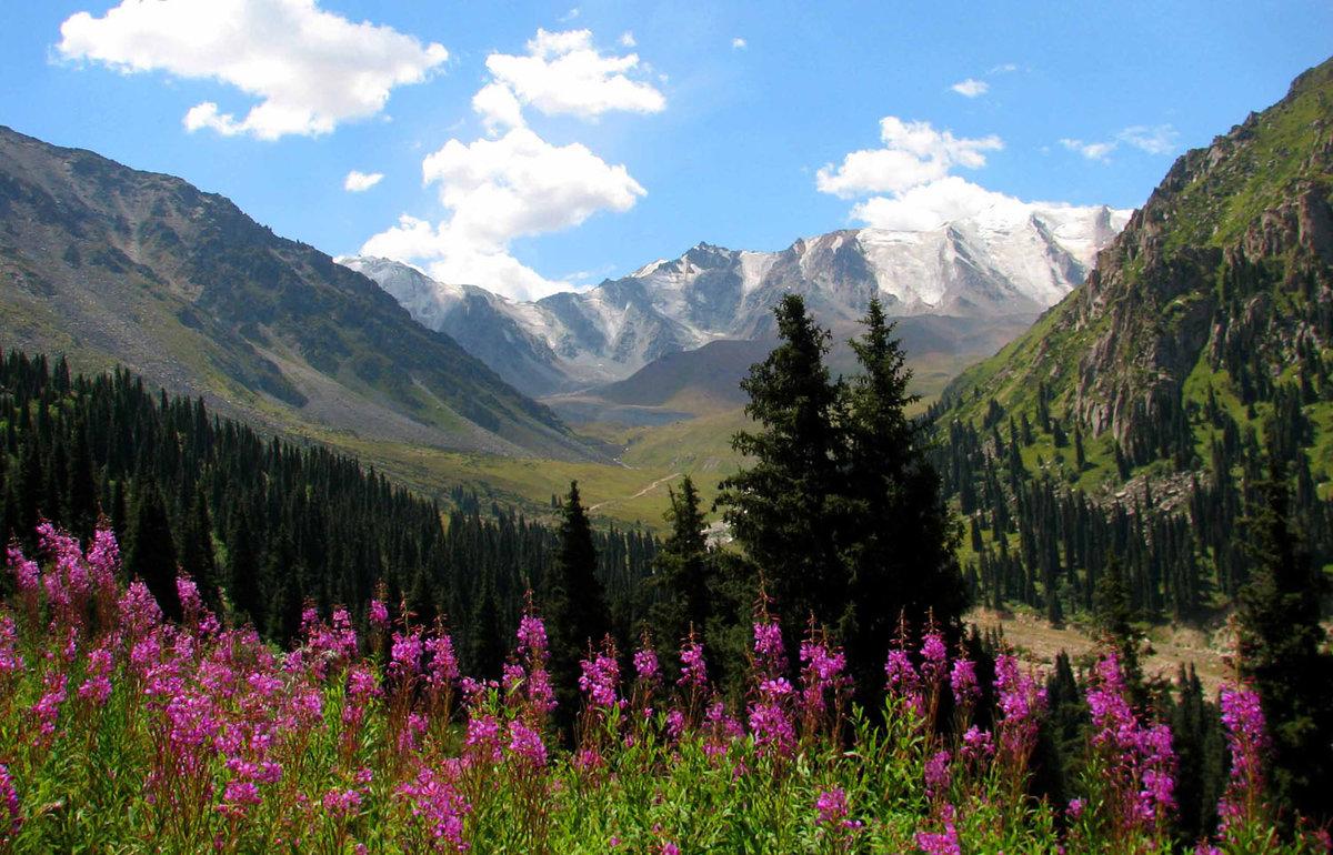 таджикистан фотографии в отличном качестве поддерживать себя