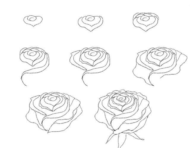 Как нарисовать розу картинки карандашом