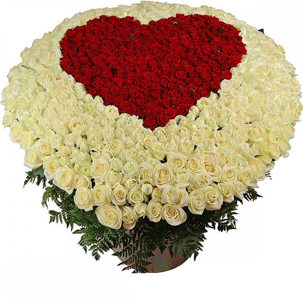 Для любимого, открытки с миллионом роз