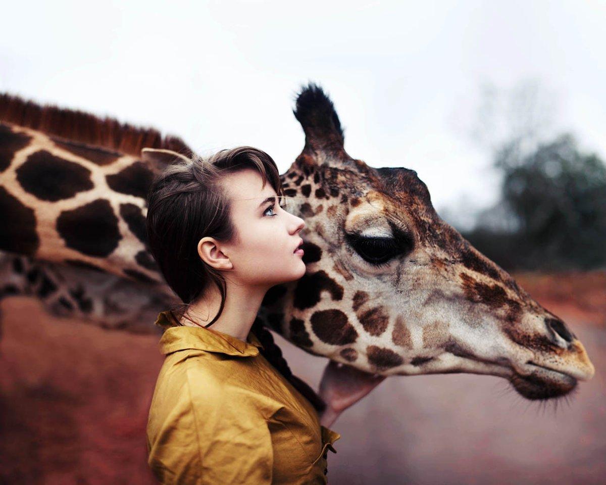 Прикольные картинки животные люди