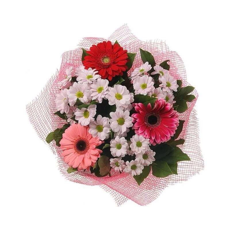 Подарочный букет из гербер и хризантем фото, красивый