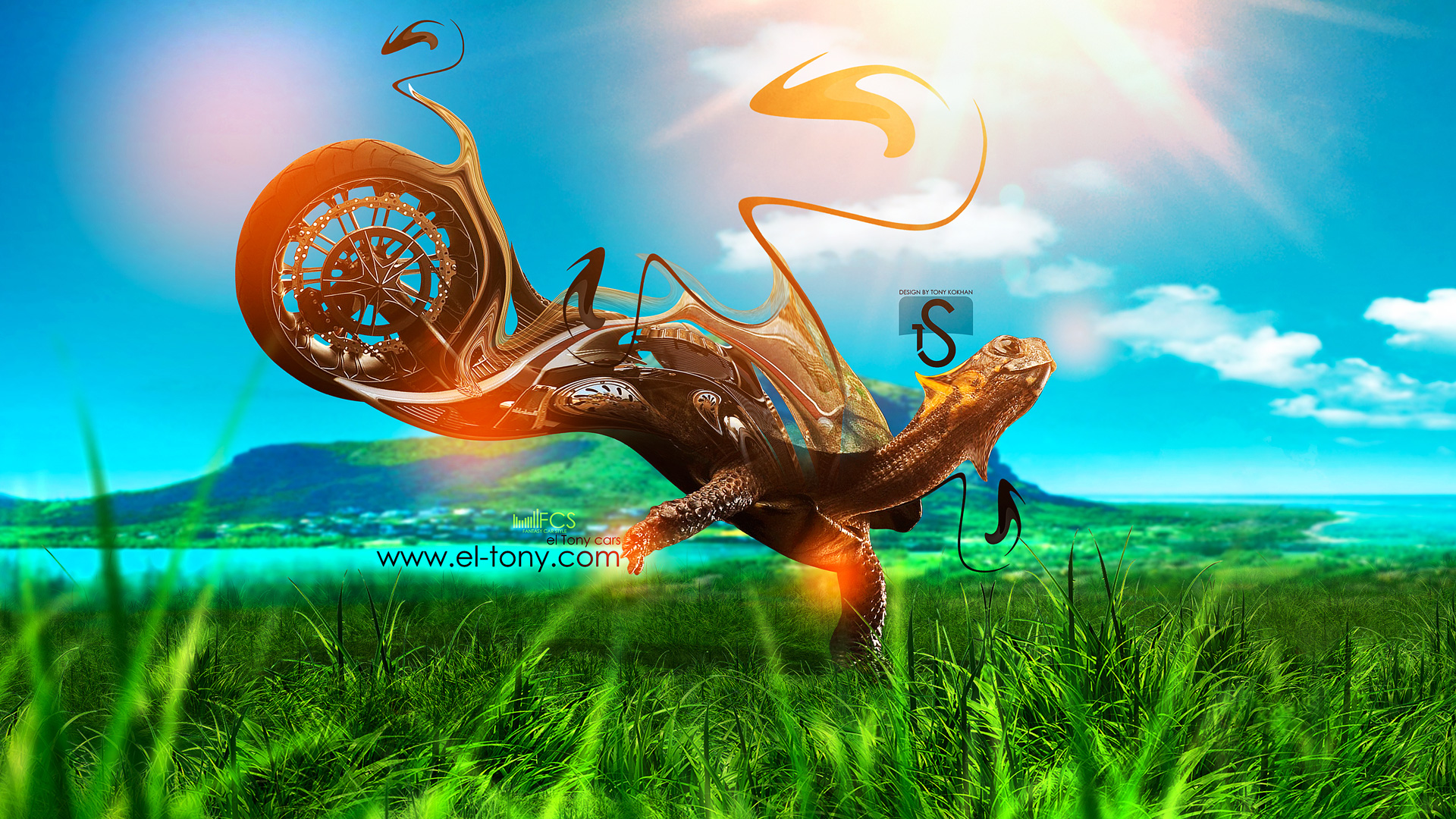Moto Fantasy Turtle Speed Art 2013 Nature Orange Neon HD Wallpapers ...