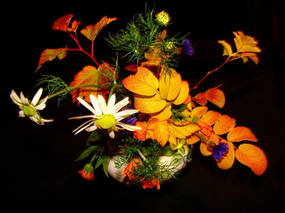 осенние цветы стихи картинки собора был