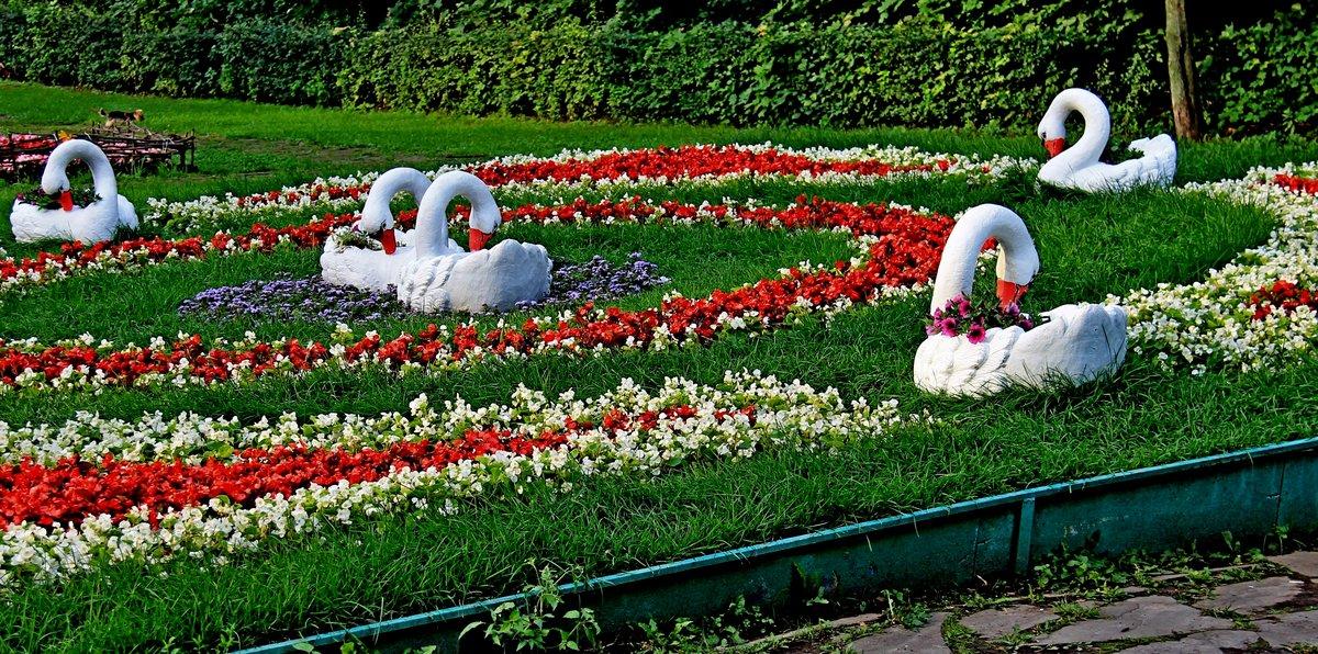 Купить цветы, кузьминки