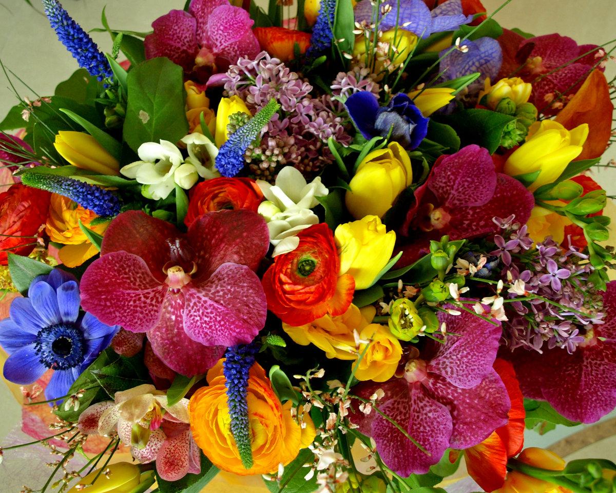 Ромашки, красивый букет разных цветов картинки