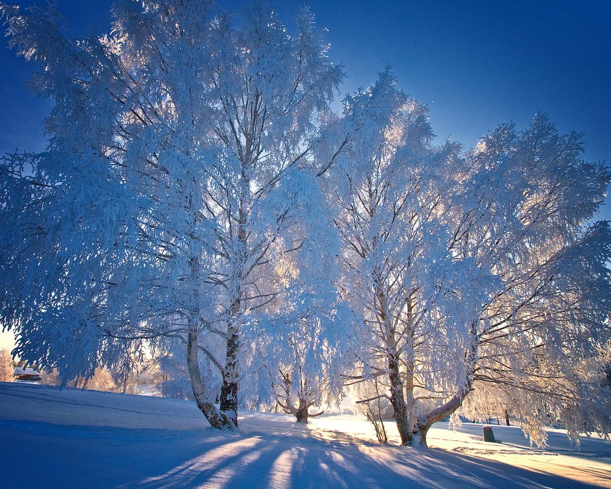автовазе фотографии о красоте зимы больше