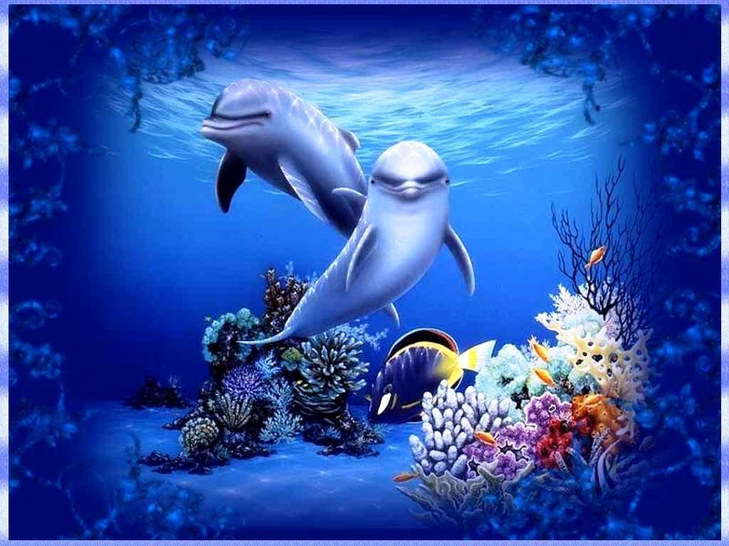 Занятия изготовление, дельфины картинки и анимашки