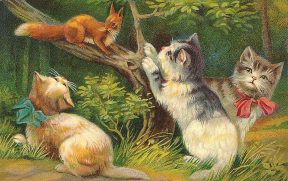 Прикол люди, старинные открытки животные
