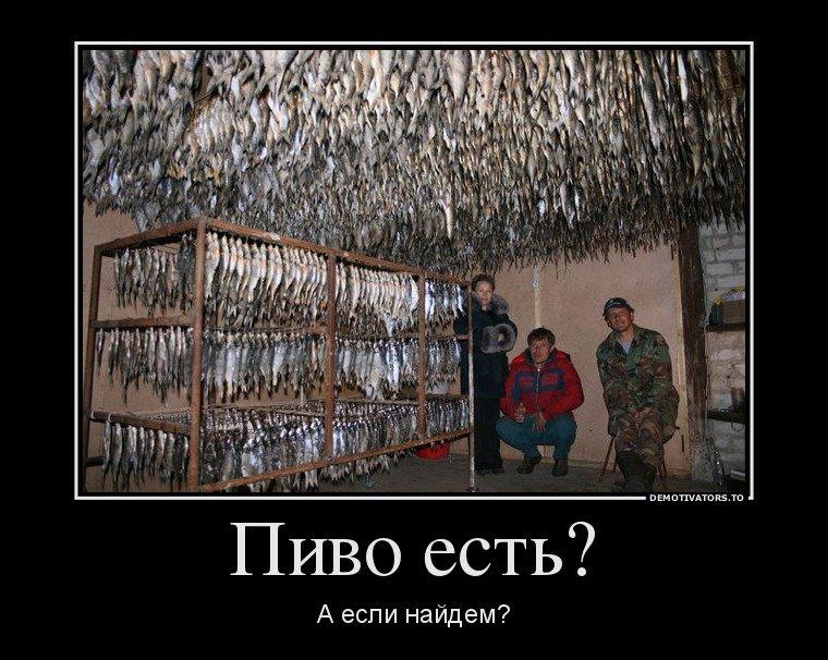 Прикольные картинки про пиво с надписями ржачные до слез русские, лето надписями