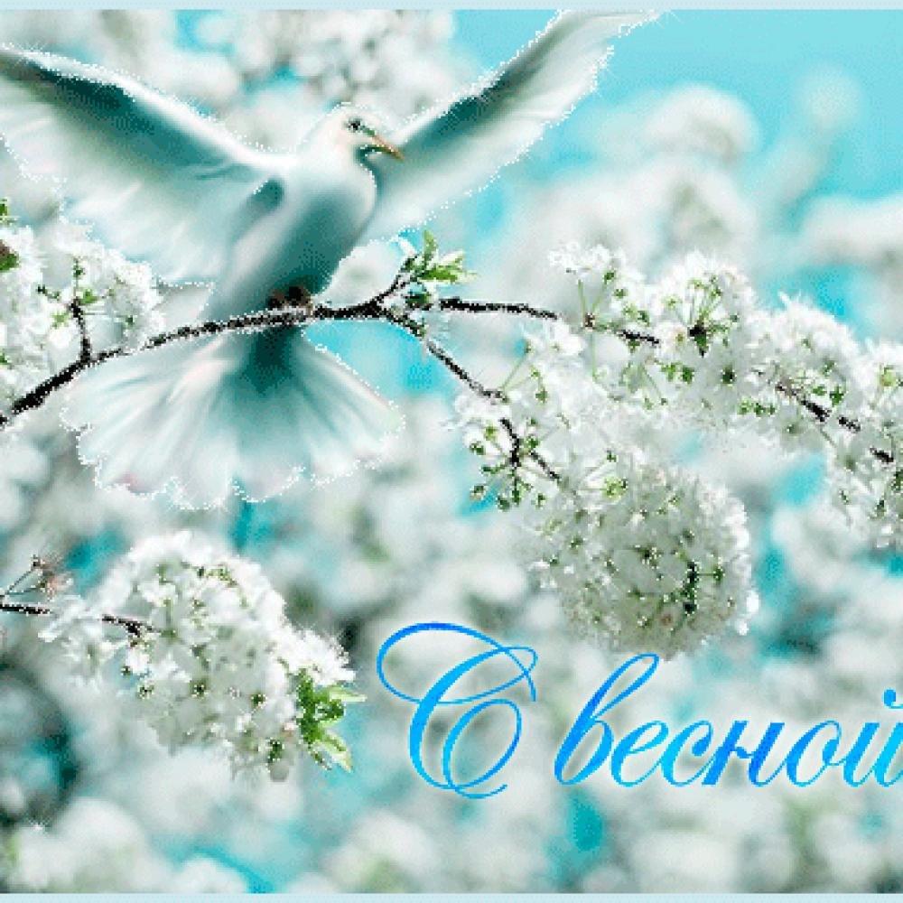 Марта, красивая весенняя открытка с весной