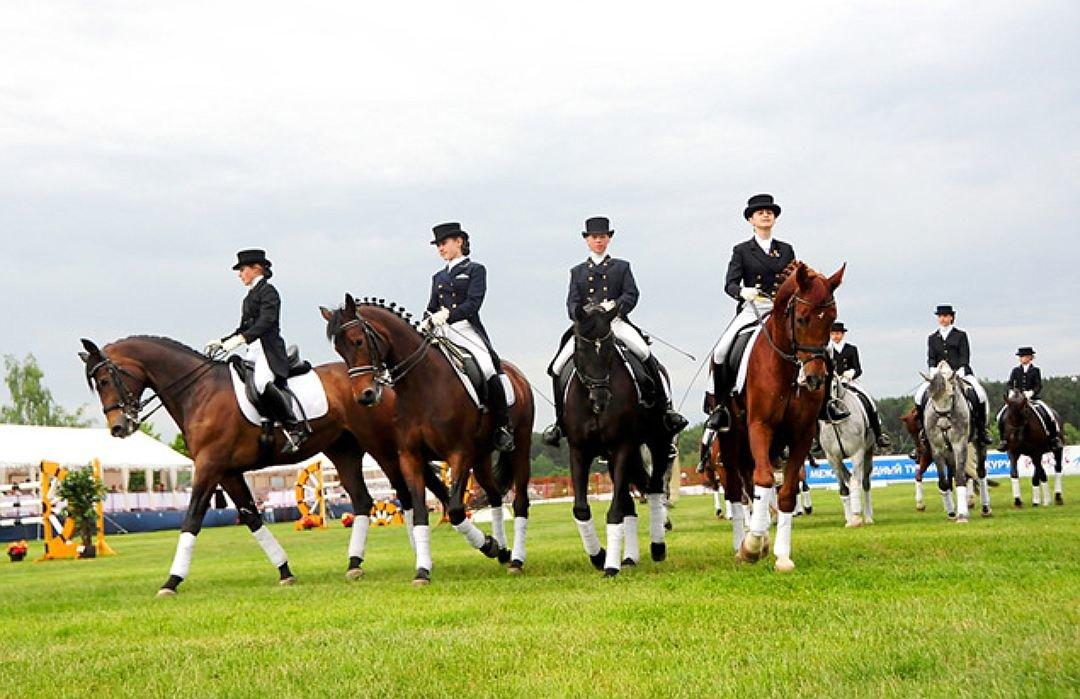 Лошади соревнования картинки