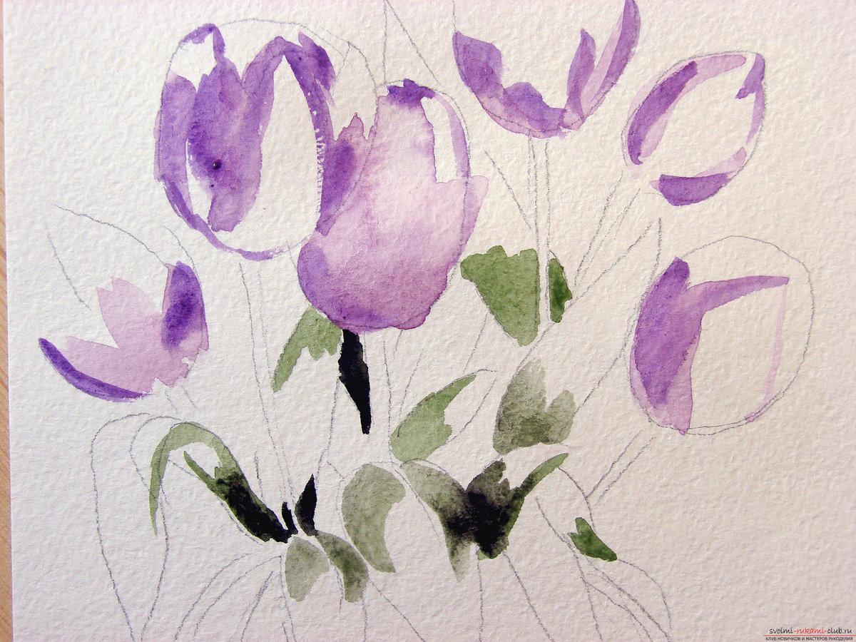 Красивые рисунки цветов акварелью для начинающих поэтапно