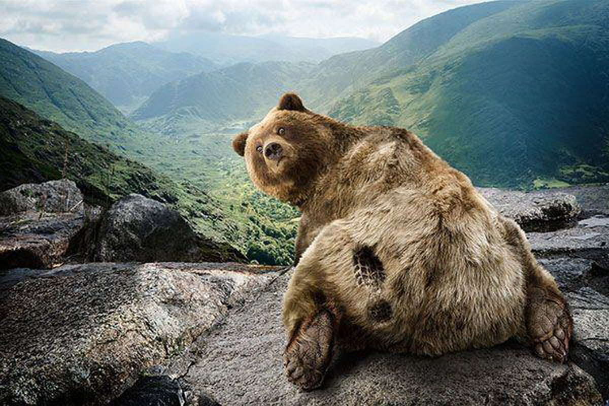 Медведь все будет хорошо картинка с надписью, мартам