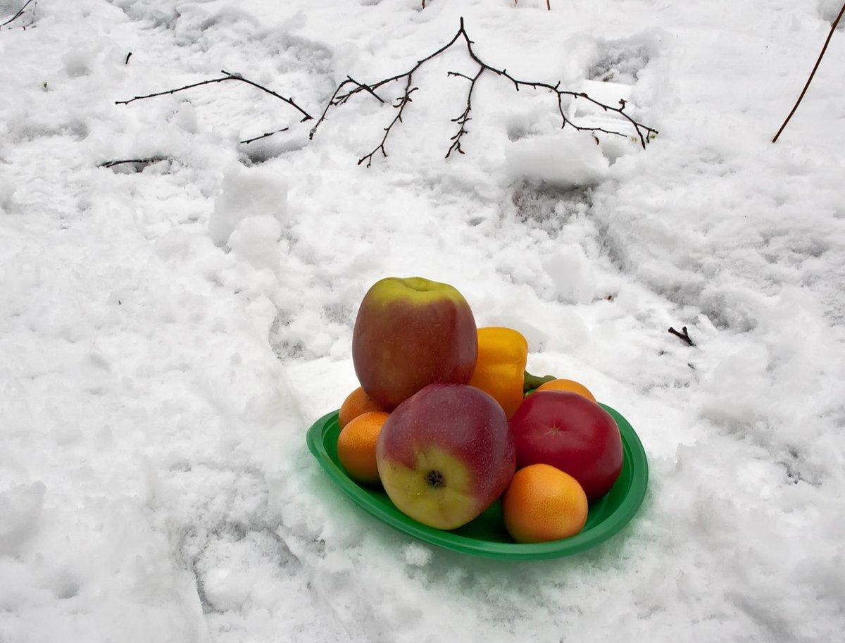 учреждение здравоохранения зима и фрукты картинки с фруктами давнюю