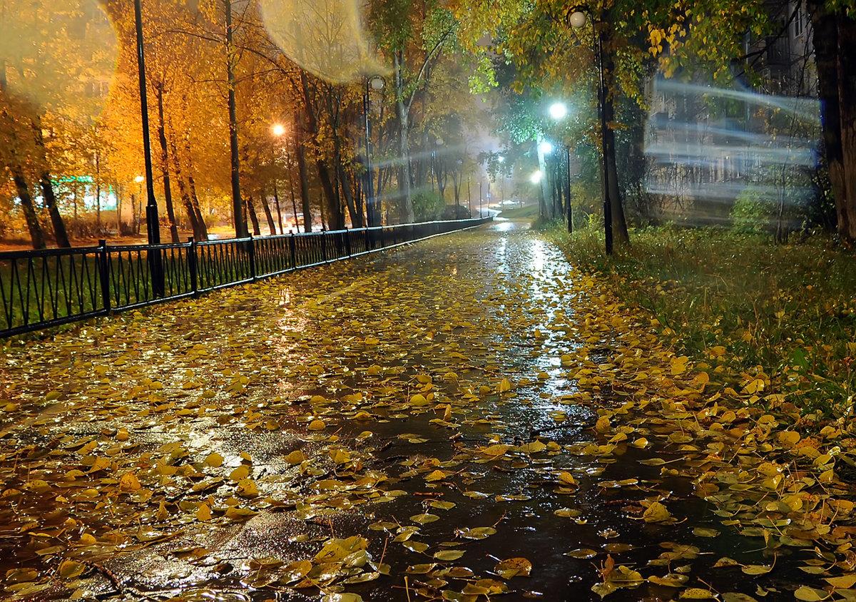 Гвоздя, картинки дождь осенью