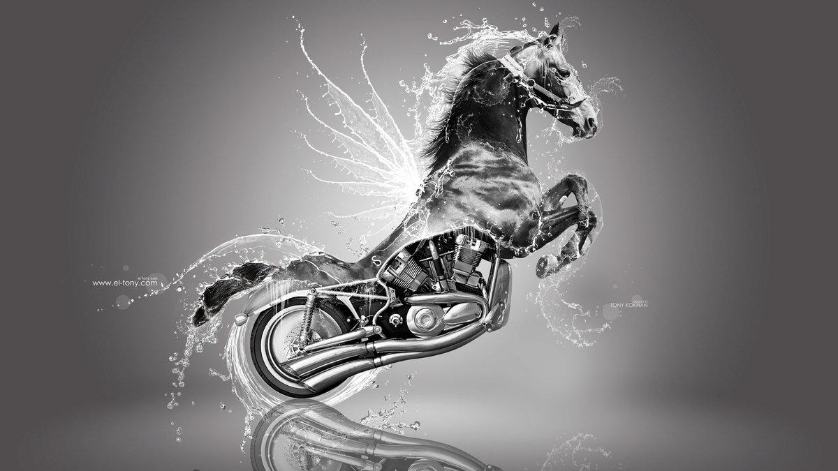 Harley Davidson Fantasy Super Water Wings Splashes Horse