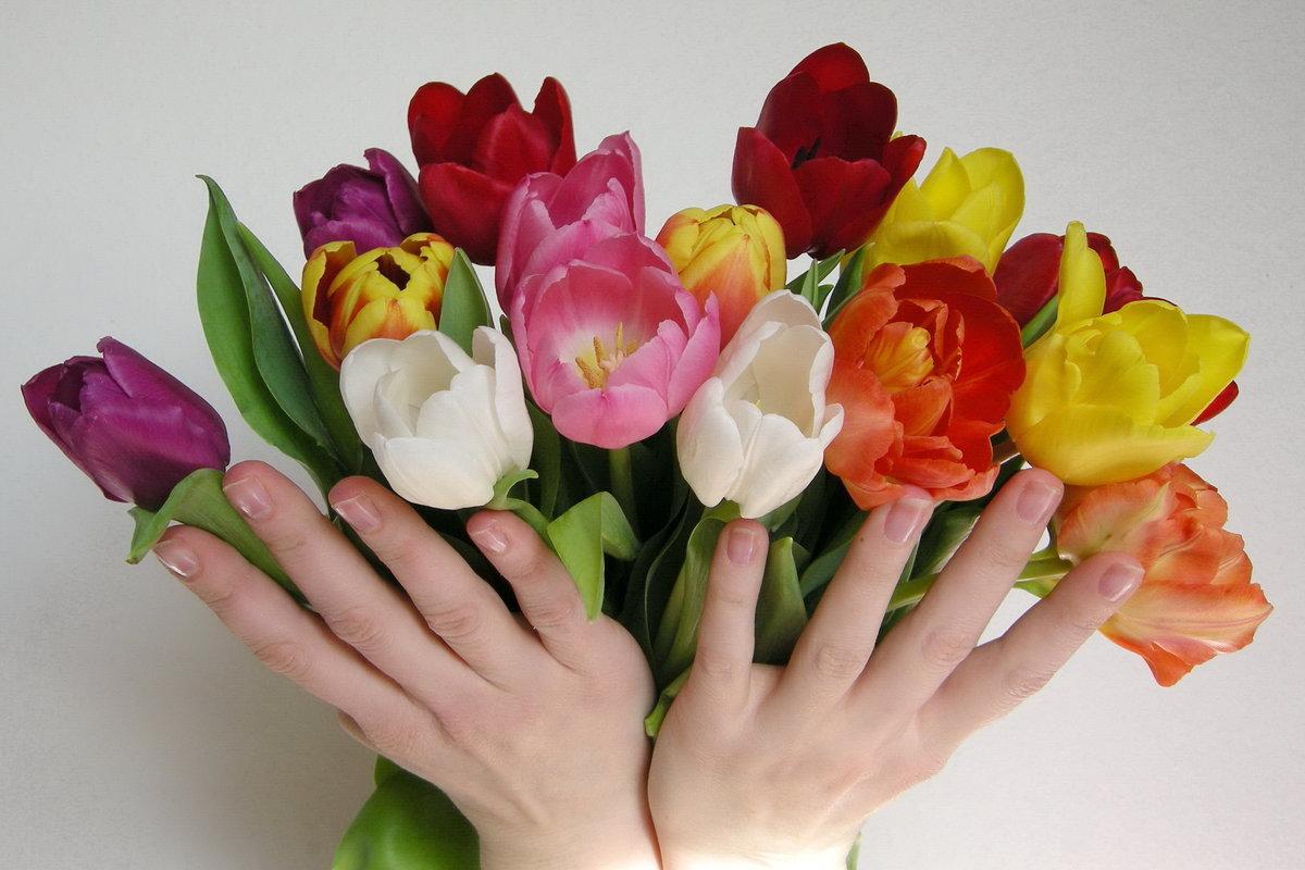 День, открытки букет цветов в руке