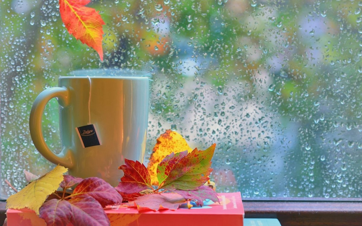 Открытки, открытка с дождиком доброе утро