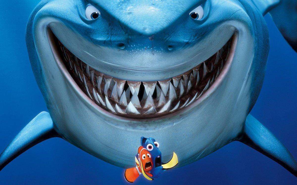 Прикольные картинки про акулу