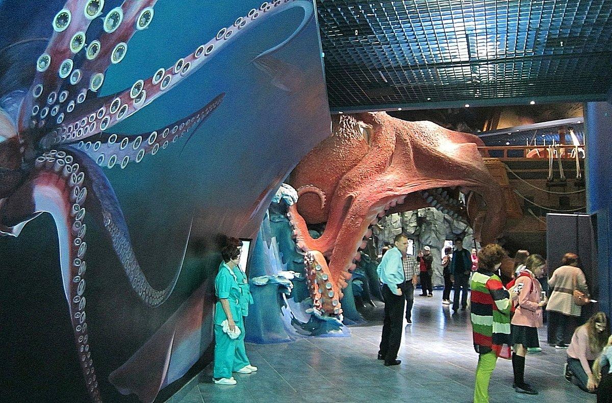 Владивостокский океанариум на русском острове фото