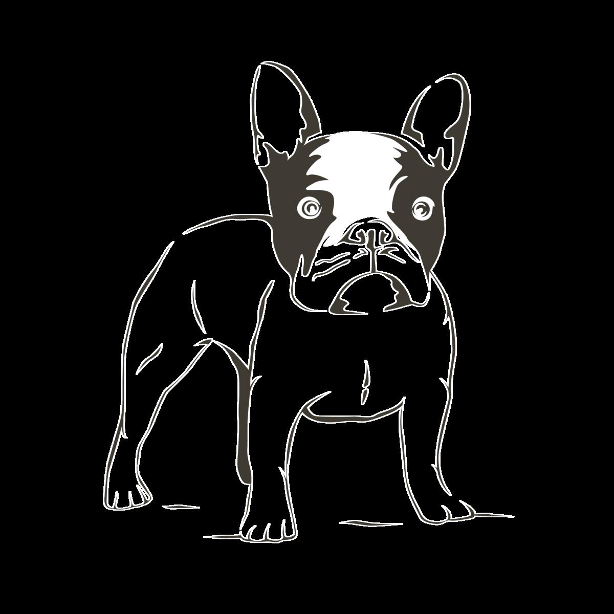 Смешные собаки картинки для срисовки