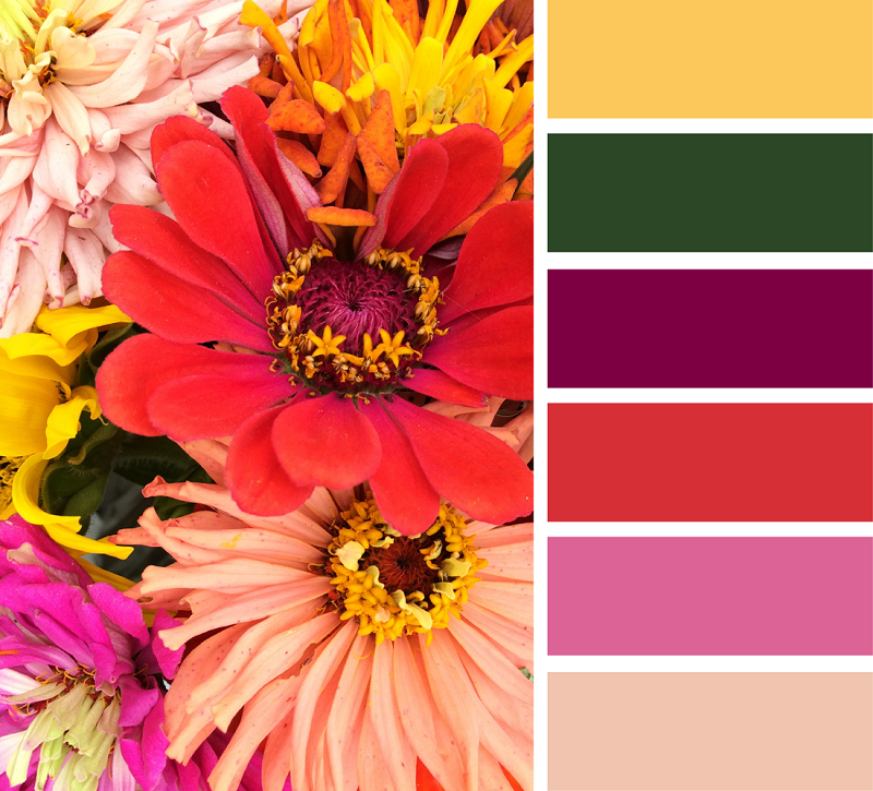 пять подобрать палитру цветов по картинке качества внешний
