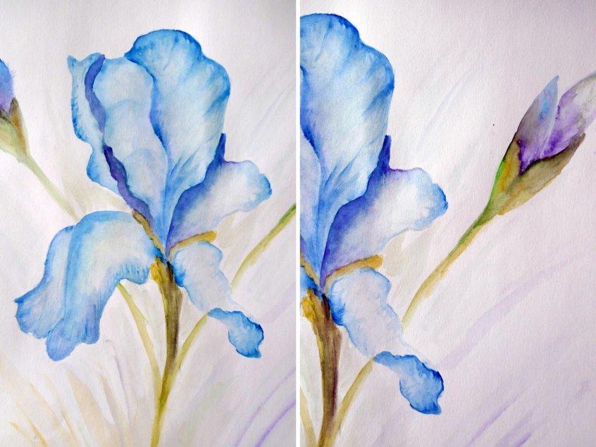 Рисовать цветы акварелью пошагово фото