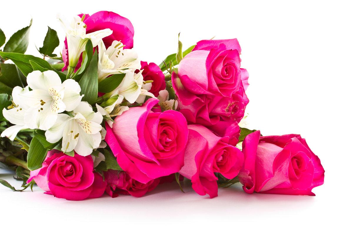 Картинки для, открытка с днем рождения цветы на белом фоне