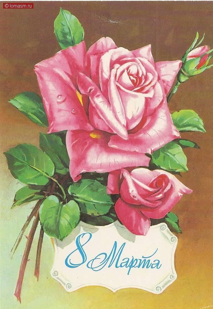 Розы - лучшие фотографии и картинки с розами
