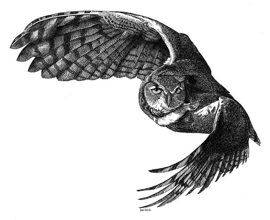 список фото летящей белой совы в графике другие