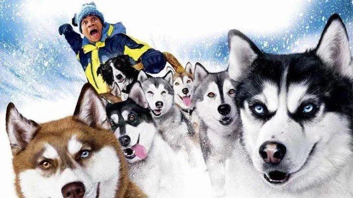 Снежные псы (фильм)