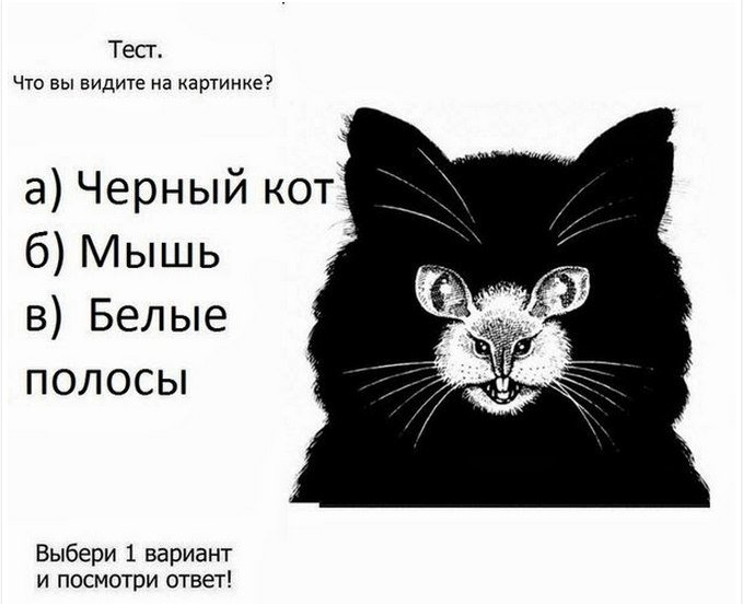 психологический тест картинками автор