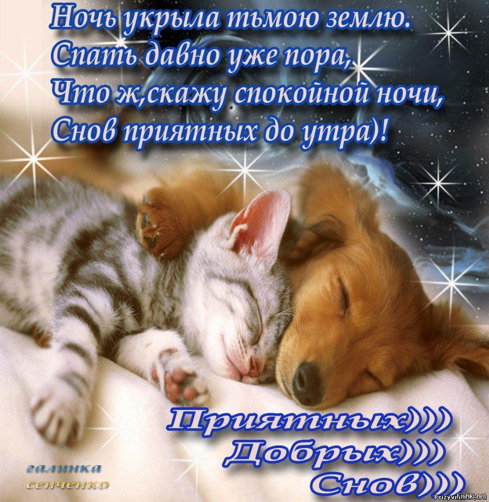 Пожелания приятных снов в открытках, подписанные для детей