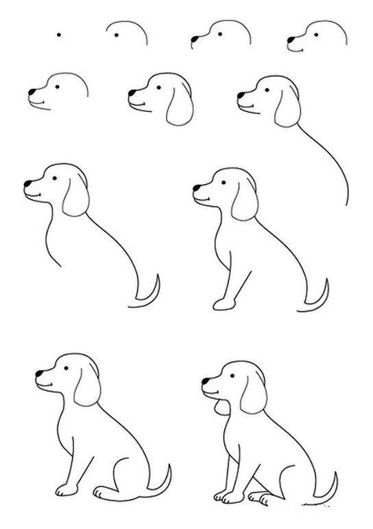 Картинка пошагово собачка