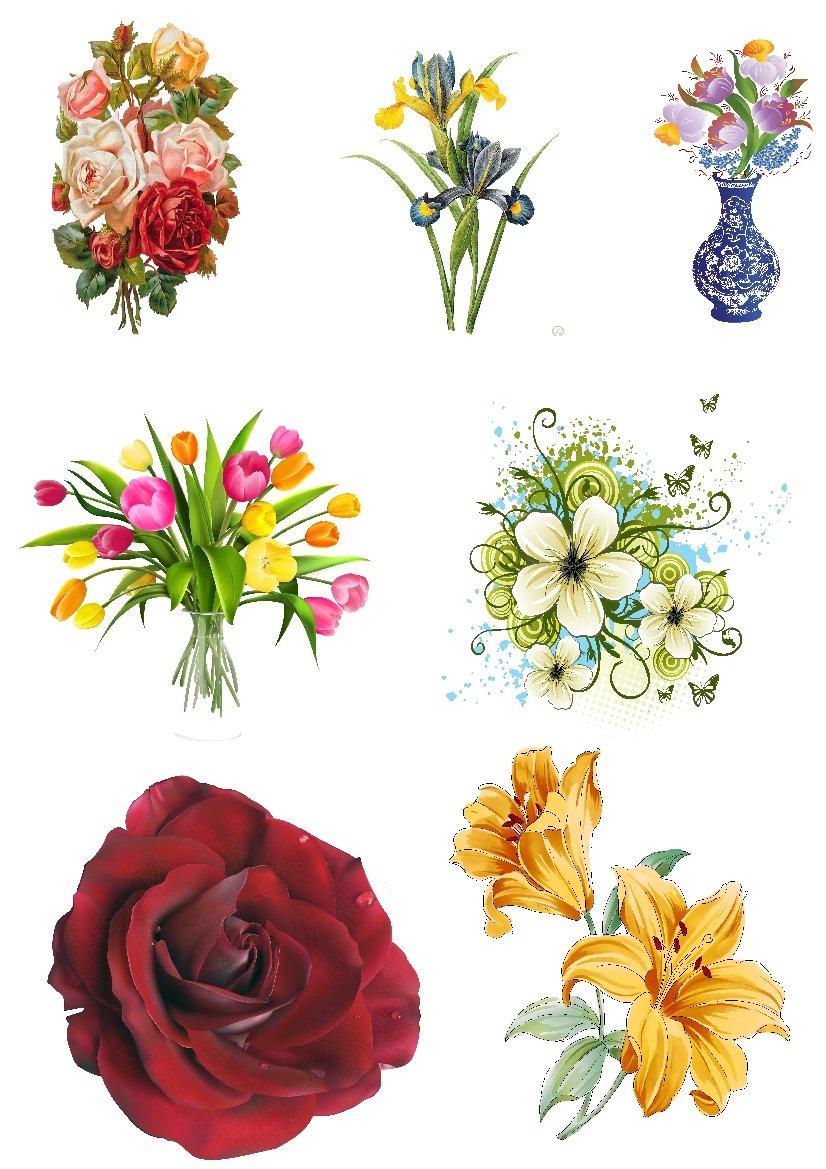 подходит для файлы в картинках цветы рынок