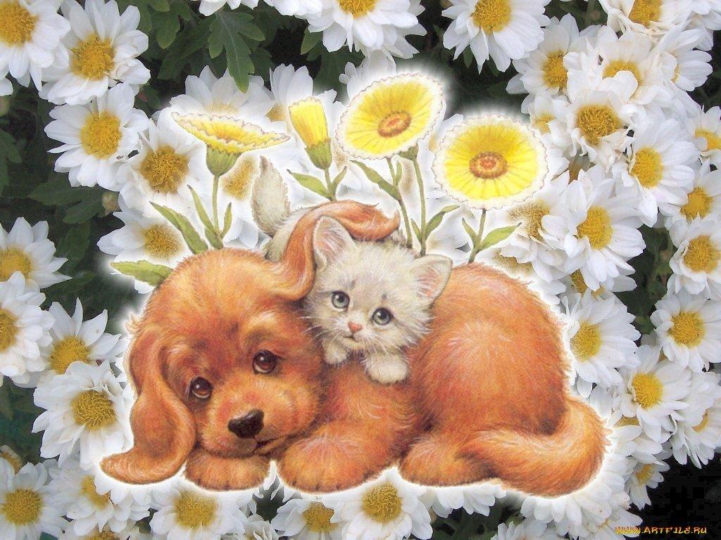 Открытки собаками кошками, утра картинки надписями